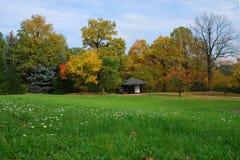 De Japanse tuin van de herfst Stock Afbeelding