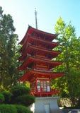 De Japanse Tuin van de Thee Stock Afbeelding