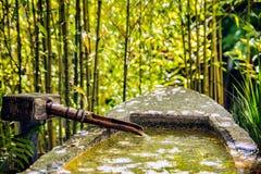 De Japanse Tuin van de Thee stock afbeeldingen