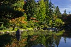 De Japanse Tuin Zen Lake van Seattle Stock Afbeeldingen