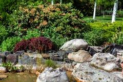 De Japanse vijver van het landschapsontwerp stock afbeelding