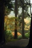 De Japanse Weg van de Tuin Stock Afbeeldingen