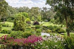 De japanska trädgårdarna Royaltyfri Foto
