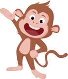 De jaren van de aap Stock Foto