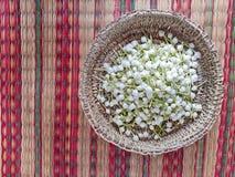 de jasmijnbloem van de gardeniakaap in een mand royalty-vrije stock foto