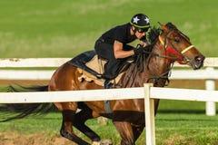 De Jockey Closeup Running Track van het raspaard Stock Afbeeldingen