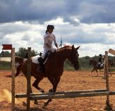 De jockey op een paard - vóór de sprong Stock Fotografie