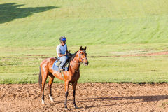 De Jockey Training van het raspaard Stock Afbeelding