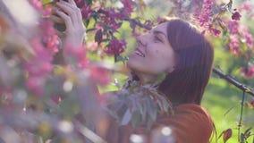 De jonge aantrekkelijke roodharige vrouw die foto's van de lentebloemen neemt van kers of sakura komt op smartphone tot bloei bij stock videobeelden