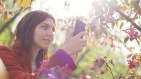 De jonge aantrekkelijke roodharige vrouw die foto's van de lentebloemen neemt van kers of sakura komt op smartphone tot bloei bij stock footage