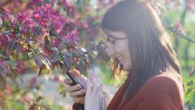 De jonge aantrekkelijke roodharige vrouw die foto's van de lentebloemen neemt van kers of sakura komt op smartphone tot bloei bij stock video