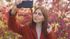 De jonge aantrekkelijke roodharige vrouw maakt een selfie op de achtergrond van de lentebloemen van kers of sakurabloesems op sma stock footage