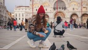 De jonge aantrekkelijke vrouw hurkt in het vierkant en voedt de duiven met handen stock footage