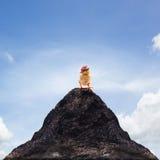 De jonge baby die van het jong geitjekuiken zich op hoogste piek van berg abstract F bevinden Royalty-vrije Stock Fotografie