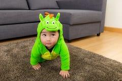 De jonge babyjongen kleedde zich in dinosaurus stock foto's