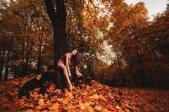 De jonge ballerina danst in het de herfstpark in de ochtend Royalty-vrije Stock Foto's