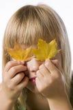 De jonge bladeren van de de dalingsesdoorn van de meisjesholding Stock Afbeeldingen