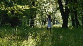 De jonge dame verzamelt paardebloemen stock footage