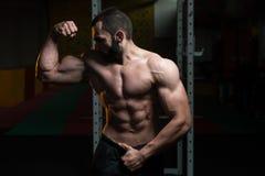 De jonge de Spieren Dubbele Bicepsen van de Bodybuilderverbuiging stellen Royalty-vrije Stock Afbeelding