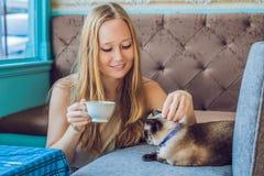 De jonge die vrouw drinkt koffie en strijkt de kat tegen de achtergrond van de bank door katten wordt gekrast stock afbeeldingen