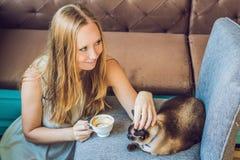 De jonge die vrouw drinkt koffie en strijkt de kat tegen de achtergrond van de bank door katten wordt gekrast royalty-vrije stock afbeeldingen