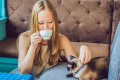 De jonge die vrouw drinkt koffie en strijkt de kat tegen de achtergrond van de bank door katten wordt gekrast royalty-vrije stock fotografie