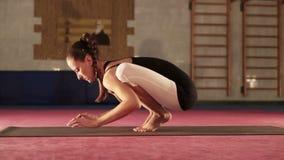 De jonge flexibele Vrouwelijke doende yogakraan stelt stock footage