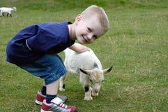 De jonge geitjes Royalty-vrije Stock Afbeeldingen