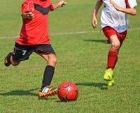 De jonge geitjes spelen voetbal royalty-vrije stock foto