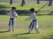 De Jonge geitjes van de karate Stock Foto
