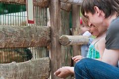 De jonge geitjes van de papa en van de dochter feedind. Royalty-vrije Stock Fotografie