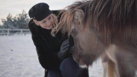 De jonge glimlachende vrouw strijkt snuit van aanbiddelijke kleine poney bij boerderij dichte omhooggaand Het meisje in warme kle stock videobeelden