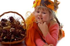 De jonge herfst Royalty-vrije Stock Foto's