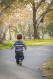 De jonge Jongen die van de Baby in het Park lopen Royalty-vrije Stock Afbeeldingen