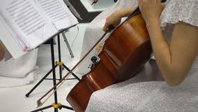 De jonge Kaukasische viool van vrouwenspelen stock videobeelden