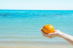 De jonge Kaukasische Vrouwelijke Gehele Rijpe Sinaasappel van de Handholding op Blauwe Hemel Turkooise Overzeese Achtergrond De w Stock Foto
