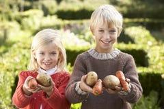 De jonge kinderen in tuin stellen met groenten stock fotografie