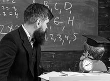 De jonge mannelijke leraar begeleidt zijn kindstudent aan het leren terwijl de zoon bord met gekrabbel bekijkt, aanwezig zijnd royalty-vrije stock foto
