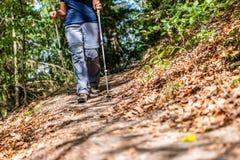 De jonge meisjesvrouw Wandeling schoes en de stokken detailleren mening in de bos openluchtactiviteit in aard stock fotografie