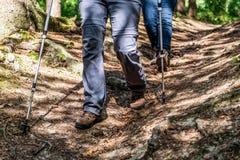 De jonge meisjesvrouw Wandeling schoes en de stokken detailleren mening in de bos openluchtactiviteit in aard stock foto