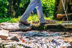 De jonge meisjesvrouw Wandeling schoes en de stokken detailleren mening in de bos openluchtactiviteit in aard stock foto's