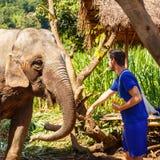 De jonge mens voedt een olifant in Chiang Mai Thailand stock foto's