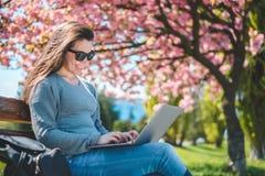 De jonge mooie donkerbruine student zit op banch met laptop Royalty-vrije Stock Foto's