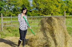 De jonge mooie vrouw die van het land aan het landbouwbedrijf, ladend stro werken stock fotografie