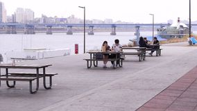 De jonge paar Koreaanse studenten hebben lunch bij park, buiten samen etend, Seoel, Zuid-Korea stock footage