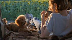 De jonge reizigersvrouw met haar hond ligt in auto open boomstam stock videobeelden