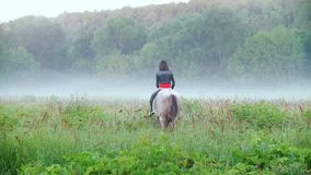 De jonge ruiter die een paard berijden springt aan de mist op de achtergrond van mooie aard stock video