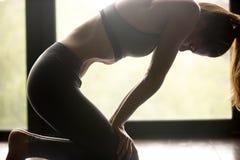 De jonge sportieve yogivrouw ademhaling in Uddiyana Bandha stelt stock fotografie