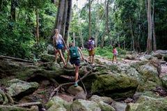 De jonge toeristen bewegen zich over de kreek op de rotsen in de wildernis Stock Afbeelding