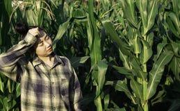 De jonge uitputting van de landbouwershitte in landbouwbedrijf stock foto's